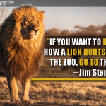 If You Want To Understand How A Lion Hunts, Don't Go To The Zoo. Go To The Jungle.
